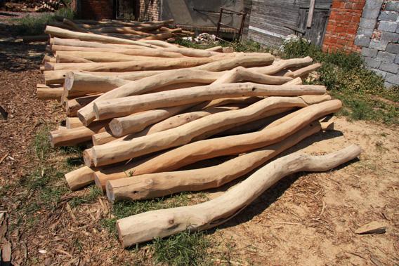 Akátové dřevo cena